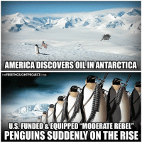 """Facebook, Memes, and News: AMERICADISCOVERSOILINANTARCTICA  FREETHOUGHTPROJECT  THE  .COM  US. FUNDED EQUIPPED""""MODERATE REBEL""""  PENGUINS SUDDENLY ON THE RISE 💭 Looks like Antarctica needs some Freedom and a Rothschild Bank! 😅 Join Us: @TheFreeThoughtProject 💭 TheFreeThoughtProject 💭 LIKE our Facebook page & Visit our website for more News and Information. Link in Bio... 💭 www.TheFreeThoughtProject.com"""