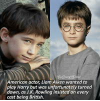American Actor Liam Aiken Wanted To Play Harry But Was Unfortunately