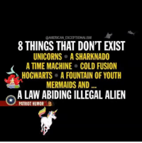 secured_borders repost:@american_exceptionalism Liberals want to convince you there is actually a Law-abiding IllegalAlien...: @AMERICAN EKCEPTIONALISM  UNICORNS ASHARKNADO  A TIME MACHINE COLD FUSION  HOGWARTS A FOUNTAIN OF YOUTH  MERMAIDS AND...  A LAWABIDINGILLEGAL ALIEN  PATRIOT HUMOR secured_borders repost:@american_exceptionalism Liberals want to convince you there is actually a Law-abiding IllegalAlien...