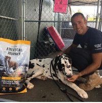 Anyone with a Great Dane knows these guys eat A LOT! We can't thank our friends at @Chewy enough for their incredibly generous donation of much needed food to help us with the 84 Danes in our care. You guys rock!!⠀⠀ ⠀⠀ Want to help us with their ongoing care? Visit the linkinbio: AMERICAN  JOURNEY  GRAIN EREE  CHICKEN & SWEET  POTATO RECIP  0OG FOOD FOR ALL LIFE STAGS  34 Anyone with a Great Dane knows these guys eat A LOT! We can't thank our friends at @Chewy enough for their incredibly generous donation of much needed food to help us with the 84 Danes in our care. You guys rock!!⠀⠀ ⠀⠀ Want to help us with their ongoing care? Visit the linkinbio