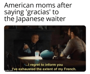 Multilingual: American moms after  saying 'gracias' to  the Japanese waiter  I regret to inform you  I've exhausted the extent of my French.  imgfip.com Multilingual