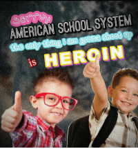 Brains, School, and American: AMERICAN SCHOOL SYSTEM  1S