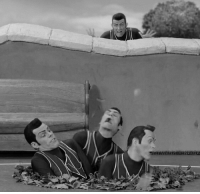 Trap, American, and Vietnam: American soldier looks terrified at his comrades fallen into a Vietcong booby trap suffering atrociously, Vietnam 1965