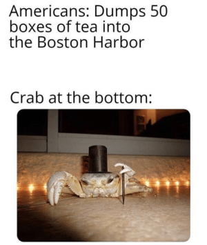 youlovetoseeit: british crabs amiright: Americans: Dumps 50  boxes of tea into  the Boston Harbor  Crab at the bottom: youlovetoseeit: british crabs amiright