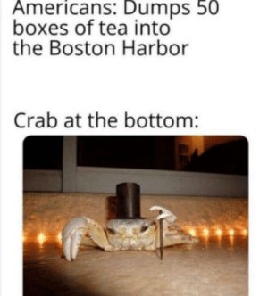 Meirl: Americans: Dumps 50  boxes of tea into  the Boston Harbor  Crab at the bottom: Meirl