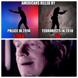 Police, Don, and Think: AMERICANS KILLED BY  POLICE IN 2018  TERRORISTS IN 2018  13  fronic. I don't Think the system works.