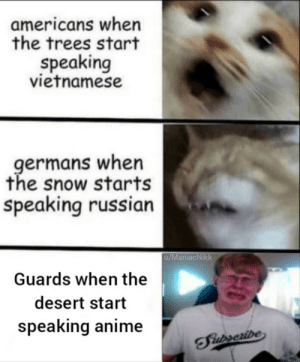 Anime, Snow, and Trees: americans when  the trees start  speaking  vietnamese  germans when  the snow starts  speaking russian  u/ManiacNikk  Guards when the  desert start  speaking anime  TFiurseribe So it begins