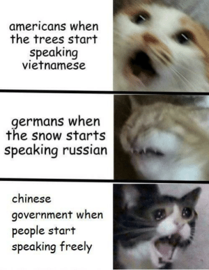 Chinese, History, and Snow: americans when  the trees start  speaking  vietnamese  germans when  the snow starts  speaking russian  chinese  government when  people start  speaking freely Found this on r/dankmemes