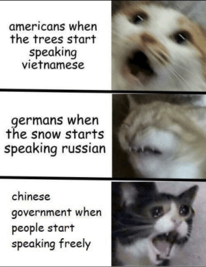 Chinese, Snow, and Trees: americans when  the trees start  speaking  vietnamese  germans when  the snow starts  speaking russian  chinese  government when  people start  speaking freely * angre phoo noises*