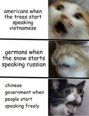 Winnie the Pooh, Chinese, and History: americans when  the trees start  speaking  vietnamese  germans when  the snow starts  speaking russian  chinese  government when  people start  speaking freely winnie the pooh is scary