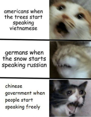 Chinese, History, and Snow: americans when  the trees start  speaking  vietnamese  germans when  the snow starts  speaking russian  chinese  government when  people start  speaking freely [r e d a c t e d]