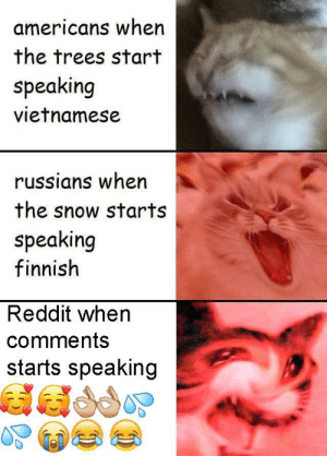 Bruh, Reddit, and Snow: americans when  the trees start  speaking  vietnamese  russians when  the snow starts  speaking  finnish  Reddit when  comments  starts speaking Bruh