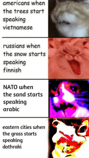 Nato, Snow, and Trees: americans when  the trees start  speaking  vietnamese  russians when  the snow starts  speaking  finnish  NATO when  the sand starts  speaking  arabic  eastern cities when  the grass starts  speaking  dothraki Pay up or get sacked