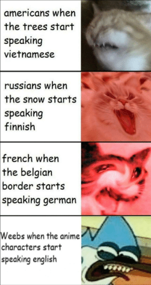 Anime, Bruh, and Wtf: americans when  the trees start  speaking  vietnamese  russians when  the snow starts  speaking  finnish  french when  the belgian  border starts  speaking german  Weebs when the anime  characters start  speaking english Yo bruh wtf