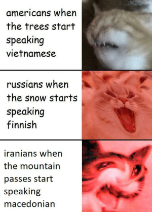 Had the Balkans, Persia, Syria, Iraq and Pakistan in my expansion pack: americans when  the trees start  speaking  vietnamese  russians when  the snow starts  speaking  finnish  iranians when  the mountain  passes start  speaking  macedonian Had the Balkans, Persia, Syria, Iraq and Pakistan in my expansion pack