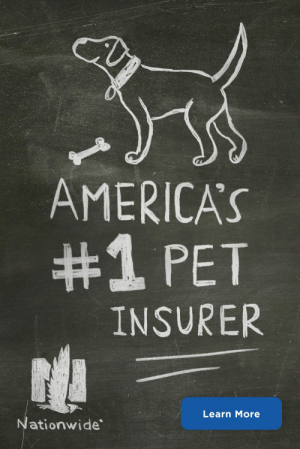Pet owners? More like pet parents. Protect your pet with America's #1 pet insurance.: AMERICA'S  #1 PET  INSURER  Learn More  Nationwide Pet owners? More like pet parents. Protect your pet with America's #1 pet insurance.