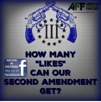 Support the 2A!: AMERICAS  AFF  FIGHTERS  HOW MANY  NATION  IN  DISTRESS  like us on  facebook  CAN oUR  SECOND AMENDMENT  GE Support the 2A!