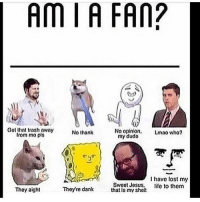 Leave stuff in the comments, I'll answer them on my story: AMIA FAN?  Got that trash away  No opinion  Lmao who?  my dudo  No thank  Irom mo pls  I have lost my  Sweet Jesus,  life to them  They aight  Theyre dank  that is my sheR Leave stuff in the comments, I'll answer them on my story