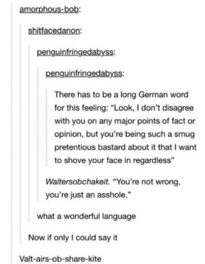 "Pretentious, Say It, and Word: amorphous-bob:  shitfacedanon:  penguinfringedabyss:  penguinfringedabyss:  There has to be a long German word  for this feeling: ""Look, I don't disagree  with you on any major points of fact or  opinion, but you're being such a smug  pretentious bastard about it that I want  to shove your face in regardless""  Waltersobchakeit. ""You're not wrong,  you're just an asshole.""  what a wonderful language  Now if only I could say it  Valt-airs-ob-share-kite What a wonderful language"