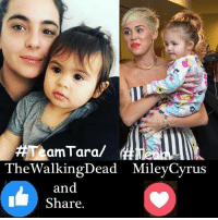 Memes, The Walking Dead, and Vans: amTara/  The Walking Dead MileyCyrus  and  Share. #TheWalkingDead fans, I wish YOU would GIVE Alanna Masterson (Tara) an ACTUAL RESPONSE today. :) (y)  Photo credit: Elliot Van Orman Productions