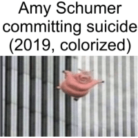 Suicide: Amy Schumer  committing suicide  (2019, colorized)