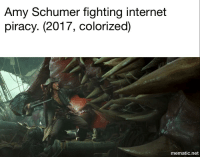 Internet Piracy: Amy Schumer fighting internet  piracy. (2017, colorized)  mematic net