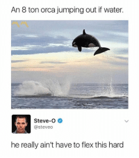 😩: An 8 ton orca jumping out if water  Steve-O  @steveo  he really ain't have to flex this hard 😩
