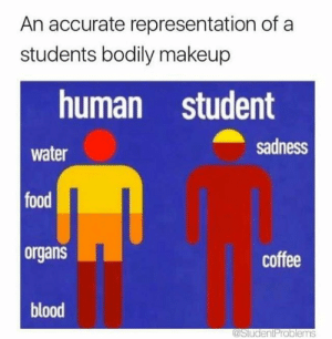 Food, Makeup, and Tumblr: An accurate representation of a  students bodily makeup  human student  water  food  organs  blood  sadness  coffee  astudentProblems Follow us @studentlifeproblems​