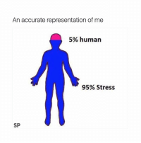 Lol, Memes, and Accurate Representation: An accurate representation of me  5% human  95% Stress  SP Lol! Check out @nochilllcomedy for more!