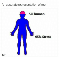 Tumblr, Http, and Accurate Representation: An accurate representation of me  5% human  95% Stress  SP @studentlifeproblems