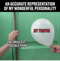 Memes, Accurate Representation, and 🤖: AN ACCURATE REPRESENTATION  OF MY WONDERFUL PERSONALITY  MY TEMPER  THE SMALLEST  POSSIBLE THING Too accurate 👌