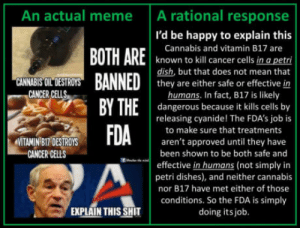 Meme, Shit, and Best: An actual meme A rational response  I'd be happy to explain this  Cannabis and vitamin B17 are  known to kill cancer cells in a petri  dish, but that does not mean that  they are either safe or effective in  humans. In fact, B17 is likely  dangerous because it kills cells by  releasing cyanide! The FDA's job is  to make sure that treatments  aren't approved until they have  CANNABIS OIL DESTROYS  CANCER CELLS  , BY THE I  MITAMIN BI7 DESTROYS  GANCER CELLS  been shown to be both safe and  effective in humans (not simply in  petri dishes), and neither cannabis  nor B17 have met either of those  conditions. So the FDA is simply  doing itsjob.  EXPLAIN THIS SHIT 60 FPS is the best cure