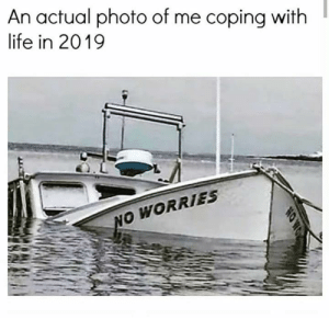 Dank, Life, and 🤖: An actual photo of me coping with  life in 2019  NO WORRIES  NOWO It's going great.