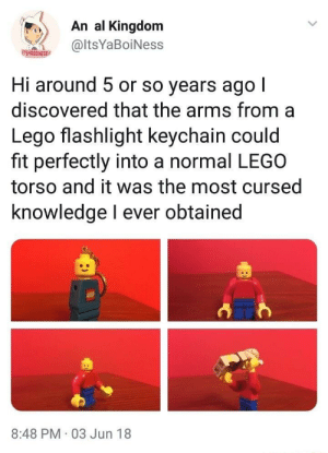 Dank, Lego, and Memes: An al Kingdom  @ltsYaBoiNess  TSVABDINESS  Hi around 5 or so years ago l  discovered that the arms from a  Lego flashlight keychain could  fit perfectly into a normal LEGO  torso and it was the most cursed  knowledge l ever obtained  8:48 PM 03 Jun 18 Man of Brick by GammaWhamma FOLLOW HERE 4 MORE MEMES.