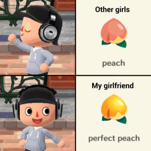 An Animal Crossing related meme I made about my girlfriend, enjoy!: An Animal Crossing related meme I made about my girlfriend, enjoy!