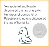 """Apple, Confused, and Memes: An apple fell and Newton  discovered the law of gravity.  Hundreds of bombs fell on  Palestine and no one discovered  the law of humanity.""""  Confused Aatnin  UNESCO and  me and my 10  other fake profiles. :/"""