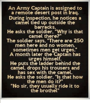 "OMG: An Army Captain is assigned to  a remote desert post in Iraq.  During inspection, he notices a  camel tied up outside the  barracks  He asks the soldier, ""Why is that  camel there?""  The soldier says, ""There are 250  men here and no women  sometimes men get urges.""  A month later the Captain has  urges himself.  He puts the ladder behind the  camel, drops his trousers and  has sex with the camel.  He asks the soldier, ""Is that how  the men do it?""  ""No sir, they usually ride it to  the brothel"" OMG"