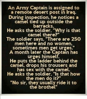 "Cameleer: An Army Captain is assigned to  a remote desert post in Iraq.  During inspection, he notices a  camel tied up outside the  barracks.  He asks the soldier, ""Why is that  camel there?""  The soldier says, ""There are 250  men here and no women  sometimes men get urges.""  A month later the Captain has  urges himself.  He puts the ladder behind the  camel, drops his trousers and  has sex with the camel.  He asks the soldier, ""Is that how  the men do it?""  ""No sir, they usually ride it to  the brothel"""