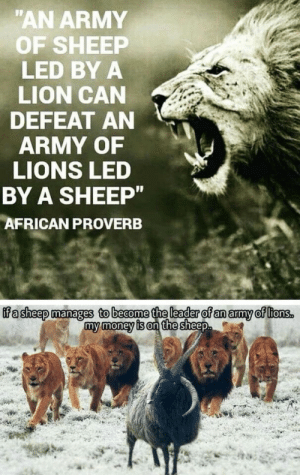 "POST TITLE: ""AN ARMY  OF SHEEP  LED BY A  LION CAN  DEFEAT AN  ARMY OF  LIONS LED  BY A SHEEP""  AFRICAN PROVERB  ifa sheep manages to become the leader of an army of ltons.  my money is on the sheep POST TITLE"