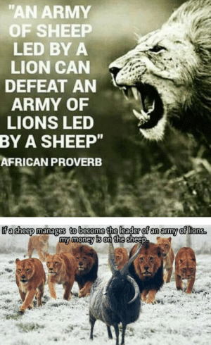 "Go Sheep: ""AN ARMY  OF SHEEP  LED BYA  LION CAN  DEFEAT AN  ARMY OF  LIONS LED  BY  A SHEEP""  AFRICAN PROVERB  f a sheep manages to become the leader of an army of lions  my money is on the sheep. Go Sheep"