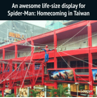 Life, Memes, and Spider: An awesome life-size display for  Spider-Man: Homecoming in Taiwan  per Everyone loves Spider-Man! Spiderman spidermanhomecoming marvelstudios marvel marveldc tomHolland IronMan AmazingSpiderman Avengers CaptainAmerica CivilWar CaptainAmericaCivilWar