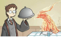 Harry Potter And The Order Of The Phoenix: AN  DE  52/// Harry Potter And The Order Of The Phoenix