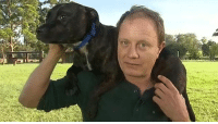 """An elderly man's Staffordshire Bull Terrier (Kiara) has proved to be a true best friend, leading rescuers through dense bushland in the NSW Blue Mountains to find his missing owner. Full story http://bit.ly/1H37n2D Please """"SHARE"""" guys【ツ】!!! #Staffies: An elderly man's Staffordshire Bull Terrier (Kiara) has proved to be a true best friend, leading rescuers through dense bushland in the NSW Blue Mountains to find his missing owner. Full story http://bit.ly/1H37n2D Please """"SHARE"""" guys【ツ】!!! #Staffies"""