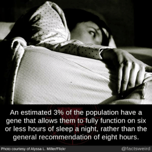 The General: An estimated 3% of the population have a  gene that allows them to fully function on six  or less hours of sleep a night, rather than the  general recommendation of eight hours.  Photo courtesy of Alyssa L. Miller/Flickr  @factsweird