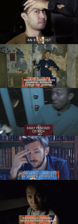 sarcasticpuffin: buzzfeed unsolved + whose line is it anyway?: AN EXORCIST   RECENTLY ARRIVED ALIEN  LEARNING BEHAVIOR  FROM THE OTHERS mily   EASILY PANICKED  OSTRICH   INCREASINGLY ANNOYED  BY BRAD'S STUPIDITY   GRADUALLY TURNING  INTO A NERVOUS LIZAR sarcasticpuffin: buzzfeed unsolved + whose line is it anyway?
