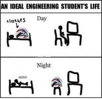 Memes, Engineering, and Idealism: AN IDEAL ENGINEERING STUDENTS LIFE  clothes  Day  Night True :P