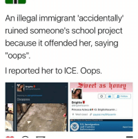 """Memes, School, and West Coast: An illegal immigrant 'accidentally'  ruined someone's school project  because it offended her, saying  oops""""  II  I reported her to ICE. Oops.  Sivert as konpu  Brigitte  Follow  Oooppsss  Brigitte  BrigitteYasamin  Princesa Azteca El IG: BrigitteYasamin.:  4 9 West coast paypal melBYasamin  U.S. Immigration  and Customs  Report Crimes  Enforcement 👈🏽swipe left """"Nice try though"""" 👌🏽💀⚰ sweetashoney"""