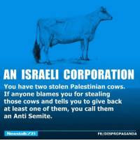 Dank, News, and Israeli: AN ISRAELI CORPORATION  You have two stolen Palestinian cows.  If anyone blames you for stealing  those cows and tells you to give back  at least one of them, you call them  an Anti Semite.  News talkZB  FBIDISPROPAGANDA Dispropaganda.com