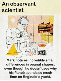 Memes, Fiance, and Time: An observant  scientist  Ir  Mark notices incredibly small  differences in peanut shapes,  even though he doesn't see why  his fiancé spends so much  time on Reginald's yacht. Today, we show an observant scientist.  What do you think an observant scientist sees (and misses)?