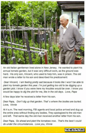 lolzandtrollz:An Old Italian Man: An old Italian gentleman lived alone in New Jersey. He wanted to plant his  annual tomato garden, but it was very difficult work, as the ground was  hard. His only son, Vincent, who used to help him, was in prison. The old  man wrote a letter to his son and described his predicament:  Dear Vincent, I am feeling pretty sad because it looks like I won't be able to  plant my tomato garden this year. I'm just getting too old to be digging up a  garden plot. I know if you were here my troubles would be over. I know you  would be happy to dig the plot for me, like in the old days. Love, Papa  A few days later he received a letter from his son.  Dear Papa, Don't dig up that garden. That' s where the bodies are buried.  Love, Vinnie  At 4 a.m. The next morning, FBI agents and local police arrived and dug up  the entire area without finding any bodies. They apologized to the old man  and left. That same day the old man received another letter from his son.  Dear Papa, Go ahead and plant the tomatoes now. That's the best I coulc  do under the circumstances. Love you, Vinnie  THE META PICTURE lolzandtrollz:An Old Italian Man
